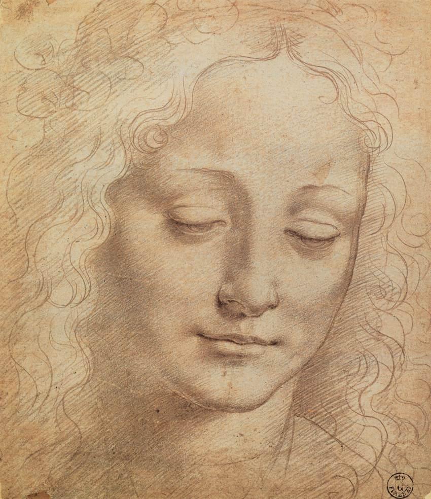 Contour Line Drawing Leonardo Da Vinci : Leonardo da vinci forum
